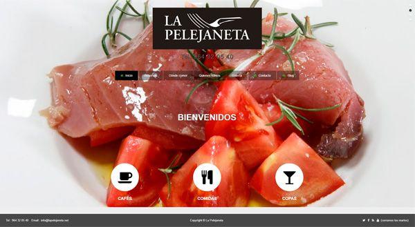 Web corporativa Castellón – La Pelejaneta